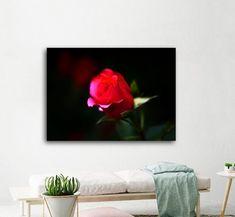 Πίνακας σε καμβά, τελαρωμένος – έτοιμος για τοποθέτηση   Εκτύπωση θέματος με ψηφιακή εκτύπωση σε καμβά 100% βαμβακερό  Τελάρο κουτί 4,5 cm Red Roses, Flat Screen, Blood Plasma, Flatscreen, Dish Display