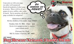 Join us for our 11th annual Charity Pug Picnic in #Michigan