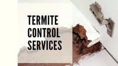 A home could encounter many wrongs when the homeowners have to plan a productive home budget as house maintenance funds for the repairs and even replacements. Termite Pest Control, Insect Pest, Home Budget, How To Plan, House, Home, Homes, Houses