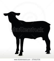 Resultado de imagen para sheep siluet