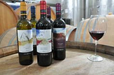 Several online companies are working to making and providing the delightful wine in all over the Cyprus. They are providing different quality wines, wine stuff from champagne, red wine, white wine, rose wine, and fortified.