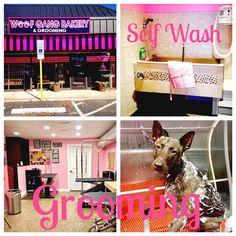Woof Gang Bakery #Fayetteville #North #Carolina