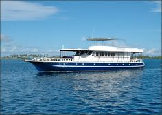MV Sea Spirit is a great boat with top crew. Blue O Two a fantastic travel company.