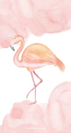 I am so excited to share with you my new summer phone wallpaper designs! Flamingo Wallpaper, Phone Wallpaper Design, Watercolor Wallpaper, Cute Wallpaper Backgrounds, I Wallpaper, Wallpaper Downloads, Cute Wallpapers, Iphone Backgrounds, Iphone Wallpapers