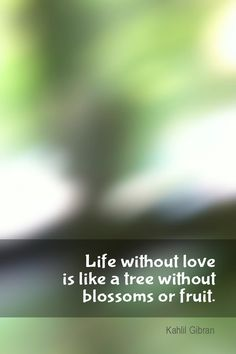 Daily Quotation for November 30, 2014 #quote #quoteoftheday     Life without love is like a tree without blossoms or fruit. - Kahlil Gibran