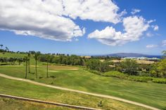 Some call It dirt… we call it the last piece of gold in Wailea The final phase of Wailea Golf Estates is now on the market. 0 Halau Pl. Lot 14 is listed by Brandy Donovan, R(S). Build your dream Maui escape overlooking the 10th Fairway of the Old Blue Golf Course with abundant ocean and mountain views. The best of Wailea, to include world class resorts and beaches, award-winning restaurants, shopping, golf, and tennis. See more on this vacant land listing @ islandsothebysrealty.com MLS…