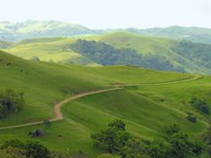 Sunol Regional Wilderness - aka Little Yosemite! No crowds, low cost, camping, hiking and waterfalls!