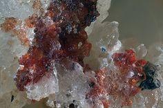 Muscovite (Var: Phengite), KAl2(AlSi3O10)(OH)2, Montaldo mine, Frazze and Rocconi localities, Borgata Oberti, Montaldo di Mondovì, Corsaglia Valley, Cuneo Province, Piedmont, Italy. Fov 2 mm. Red crystals of Phengite. Collection/Photo Bruno Marello