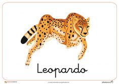 Fichas de Animales Salvajes: Leopardo Funny Animal Memes, Funny Animal Videos, Videos Funny, Animal Wallpaper, Animal Design, Animal Paintings, Funny Faces, Pattern Wallpaper, Tigger
