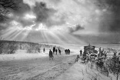 WWI, near Verdun: A winters evening scene with troops and horses walking through the snow-covered French countryside.
