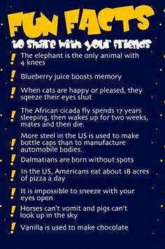 Interesting Fun Facts!
