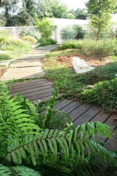 Another approach: Your plant choices expand if you design a boardwalk low to the ground. In this case, you can pretty much work with plants of any height. Just don't impede foot traffic with aggressive, horizontal growers.
