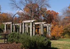The leaves are beginning to turn in Greensboro, and fall foliage is always beautiful here. The vibrant landscapes are sure to take your breath away. Plan your getaway today and visit Greensboro's parks and gardens.