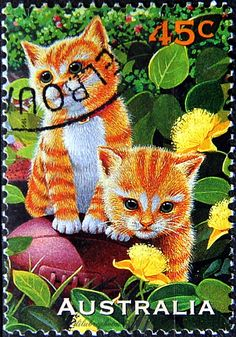 Australia.  KITTENS.  Scott 1562 A518, Issued 1996 Oct 1, Perf. 14 x 14 1/2, 45. /ldb.