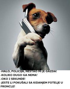 HALO, PAS OVDE!   #dog #funny #humor #Memes #Missing #Owner #pas #police #policija #MemesSerbian #smeh #smešno #Srpski #SrpskiMimovi #telefon #TelefonskiDvojnik #Telephone