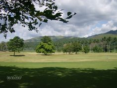 Hacienda Santa Teresa. El Consejo, Aragua-Venezuela