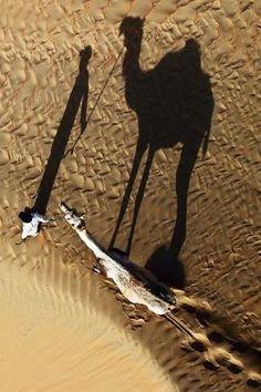 Shadow ✿⊱╮ by VoyageVisuel