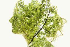 CHRISTOFFER RELANDER: SYMBIOSIS http://www.widewalls.ch/christoffer-relander-symbiosis-exhibition-galleri-geo-bergen/ #FineArt #Photography #Nature