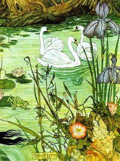 Иллюстрации Майкла Хага   Illustrations of Michael Hague (340 работ)
