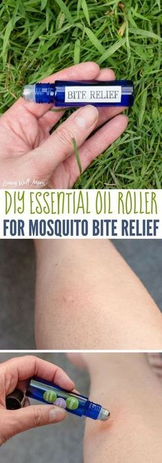 10 Essential Oils for Bug Bites + DIY Mosquito Bite Relief Roller Recipe This easy, all-natural remedy for mosquito bite relief is a simple DIY essential oil roller blend. It stops itching & swelling quickly and is safe for both kids and adults. Mosquito Bite Relief, Bug Bite Relief, Mosquito Bite Swelling, Stop Mosquito Bite Itch, Young Living Oils, Young Living Essential Oils, Essential Oils For Mosquitoes, Remedies For Mosquito Bites, Essential Oil Uses
