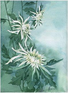 White on green by kosharik69 on DeviantArt