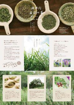 株式会社エアー.プラスのWorks Website Design Layout, Web Layout, Layout Design, Leaflet Design, Catalog Design, Japan Design, Web Design Inspiration, Food Design, Brochure Design