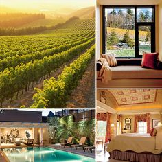 The Best Honeymoon Destinations in the USA For Wine Lovers -  Portland, California, and Northern Virginia!