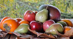 Frutas de temporada en http://comefruta.es