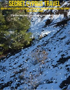 Secret Cyprus Travel Issue 8. Discover the most popular stories from our December's expeditions!!
