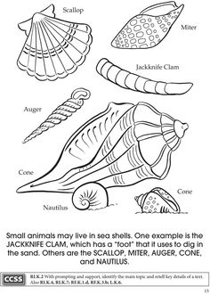 Welcome To Dover Publications BOOST At The Aquarium Coloring Book Teachers Manual Available With This