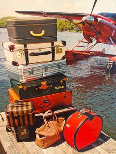 Let's travel darling.