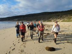 Walk End-To-End on the Cape to Cape Track, Western Australia by Adventurous Women Perth Western Australia, Australia Travel, Walking Holiday, Overseas Travel, Group Travel, Outdoor Woman, Travel Alone, Adventure Travel, Travel Inspiration
