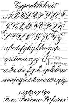Calligraphy Fonts Alphabet, Tattoo Fonts Alphabet, Copperplate Calligraphy, Hand Lettering Alphabet, Cursive Fonts, Typography Letters, Caligraphy, Penmanship, Tattoo Lettering Styles