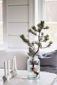 Christmas Decorations - my scandinavian home: A touch of Scandinavian Christmas decorating inspiration Mini Christmas Tree, Nordic Christmas, Simple Christmas, Winter Christmas, All Things Christmas, Christmas Home, Rustic Christmas, Beautiful Christmas, Minimalist Christmas Tree