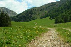 Itinerario 5 - Malga Prato (foto di L.Zamprogno) immersa in una conca verde posta tra l'abitato di Campolaro e il Monte Croce Domini. Si tratta di un percorso semplice ma molto suggestivo (www.uomoeterritoriopronatura.it).