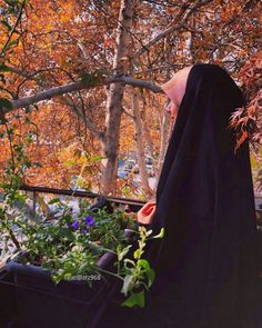 Hijab Dp, Girl Hijab, Muslim Fashion, Hijab Fashion, Beautiful Hijab, Beautiful Women, Medical Quotes, Persian Girls, Some Funny Videos