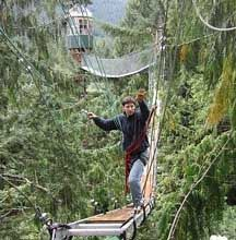 "Cedar Creek Treehouse is an Earth-friendly, privately owned and operated mountain retreat, located one mile as the crow flies, 10 miles by car, from the Nisqually River Entrance to Mount Rainier National Park, and bordering the Gifford Pinchot National Forest.    We offer unique treehouse vacation rental lodging with this ""bed and breakfast"" cottage 50 feet up in a 200-year old Western Red Cedar tree. And with the new addition of our Treehouse Observatory (and its ""Stairway to Heaven""…"