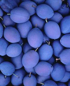 Periwinkle Berries