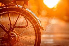 Bike | Stocksy