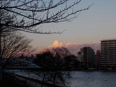 この季節、もう夕方なのに発達した積雲を見つけました。