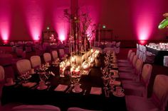 Photo: courtesy of Z Media  Photo Source: Neil Leeson Decor Floral