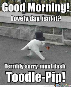 Hilarious Good Morning Meme   good morning, ladies   Hello ...