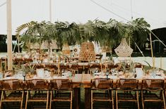 Hanging lights over table, bamboo chairs, tropical leaves, seashell and macrame chandeliers. Tropical Wedding Reception, Kauai Wedding, Floral Wedding, Waimea Plantation Cottages, Wedding Decorations, Decor Wedding, Wedding Greenery, Tent Design, Destination Wedding Inspiration