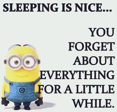 eh sometimes what u think about invades your dreams. Cute Minions, Minions Despicable Me, Funny Minion, Minion Talk, Minion Humor, Insomnia Funny, Grumpy Cat Quotes, Boxing Quotes, Universe Quotes