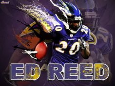 Baltimore Ravens Wallpaper | All you guys asked us for more Baltimore Ravens wallpapers, so, here ...