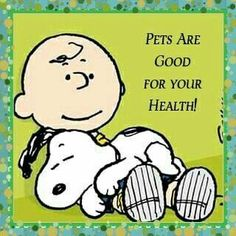 ideas for dogs funny quotes thoughts life art breeds cutest funny training bilder lustig welpen Meu Amigo Charlie Brown, Charlie Brown Und Snoopy, Charlie Brown Quotes, Peanuts Quotes, Snoopy Quotes, Funny Cartoon Quotes, Funny Cartoons, Funny Sayings, Disney Sayings