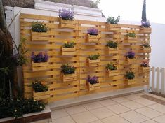 I just can't resist the beauty of this exquisite pallet wood recycled vertical garden. This is made with extreme love and care plus the expertise and mastery also seems to be on peak in this specific pallet wood creation. Infact this is more of a decoration piece.
