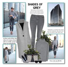 """Shades of grey!!"" by lilly-2711 ❤ liked on Polyvore featuring CO, Dansk, Grey's Anatomy, Topshop, Balenciaga, Gucci, Manolo Blahnik, Tt Collection and Acne Studios"