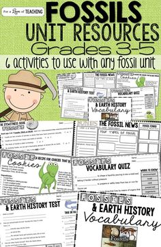 Science - Fossils & Earth Surface Unit Resources {Test Included}  This is a mini bundle with several resources included for a Fossil Unit.