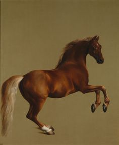 Whistlejacket  about 1762, George StubbsWhistlejacket was foaled in 1749. His most famous victory was in a race over four miles for 2000 guineas at York in August 1759. Stubbs's huge picture was painted in about 1762 for the 2nd Marquess of Rockingham, Whistlejacket's owner and a great patron of Stubbs.  National Gallery London